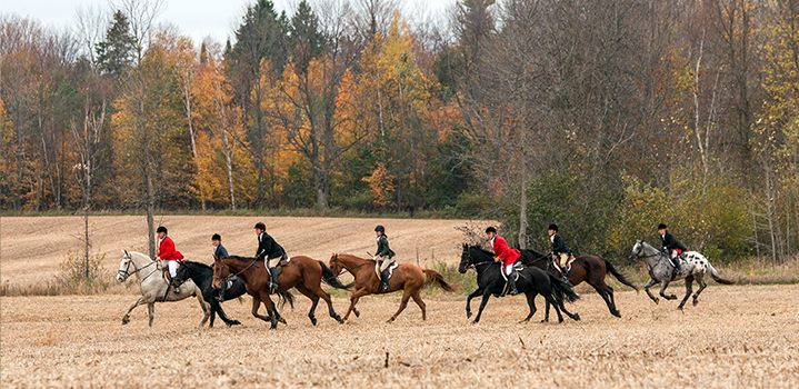horse riding in fall