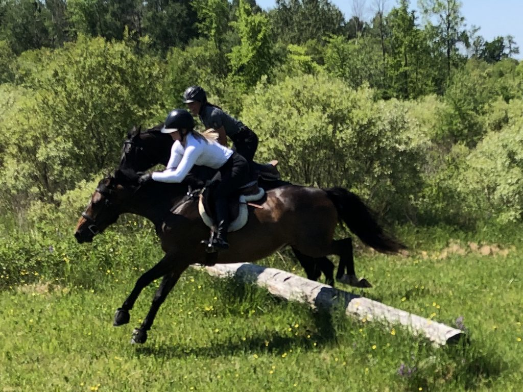people jumping horses over log